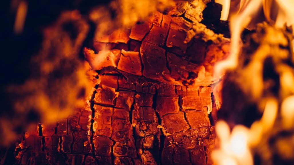 ¿Por qué arden nuestros bosques?